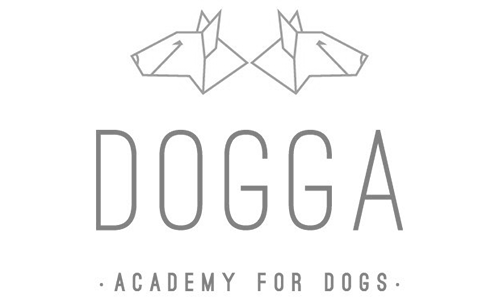 Dogga - Academy for docs